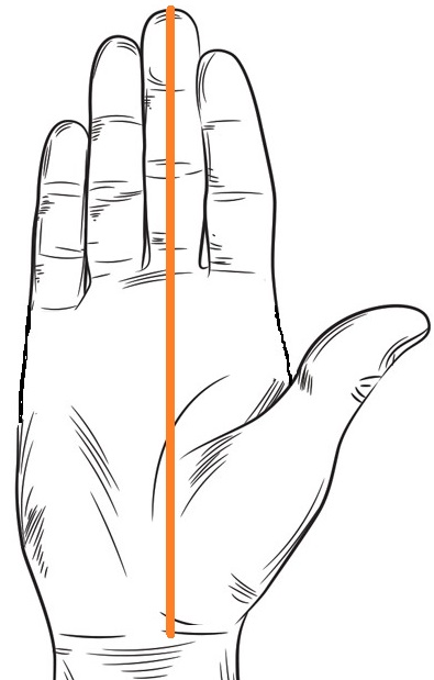 How To Measure Your Hand Length